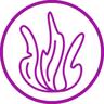 INEY Splat pasta 5.COMPLEX